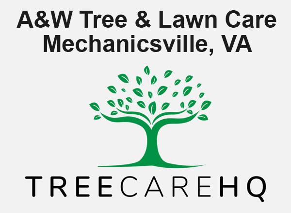 A&W Tree & Lawn Care