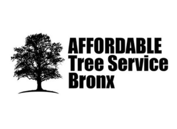Affordable Tree Service Bronx