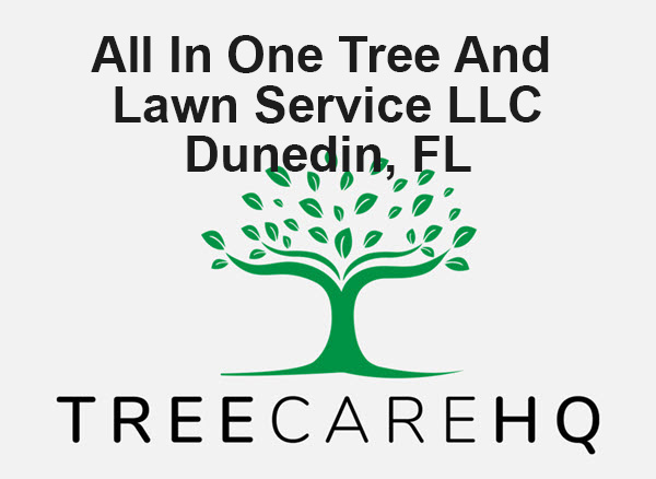 All In One Tree And Lawn Service LLC