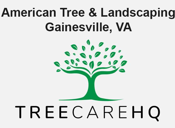 American Tree & Landscaping