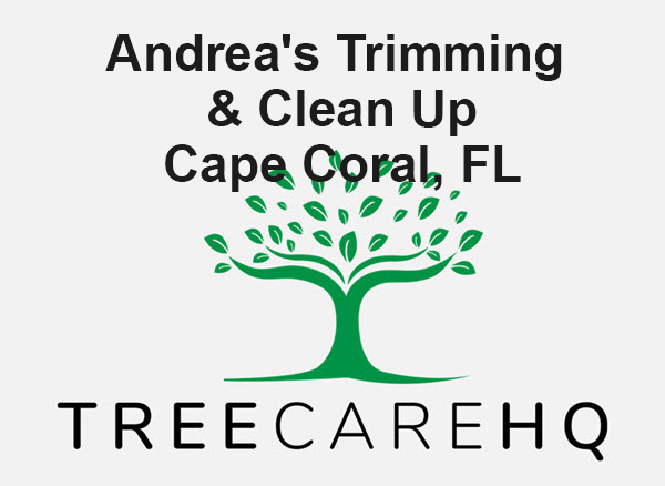 Andrea's Trimming & Clean Up