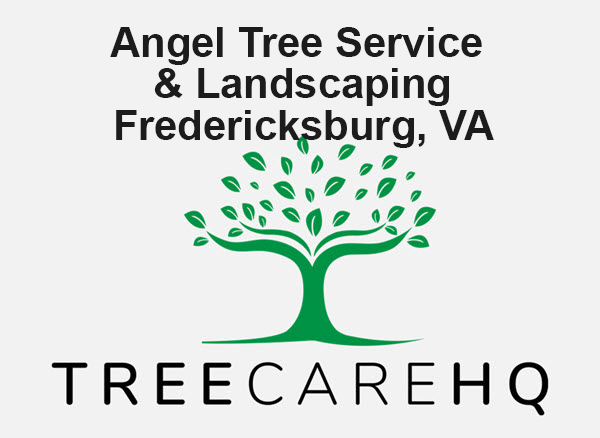 Angel Tree Service & Landscaping