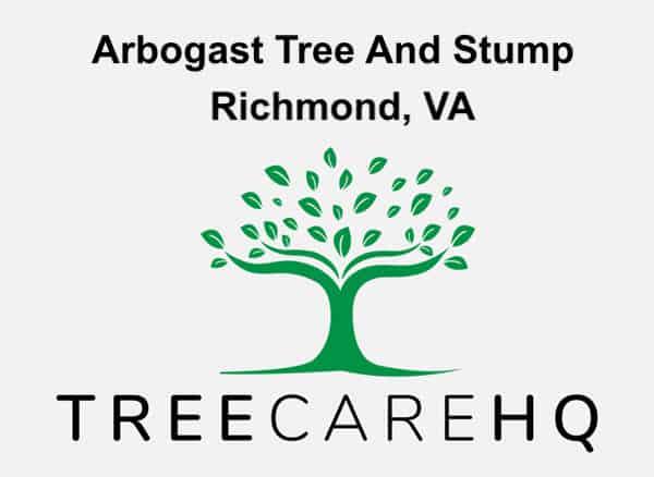 Arbogast Tree And Stump on TreeCareHQ