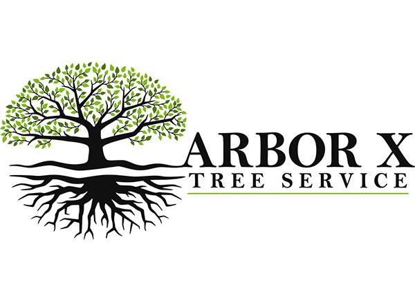 Arbor X Tree Service
