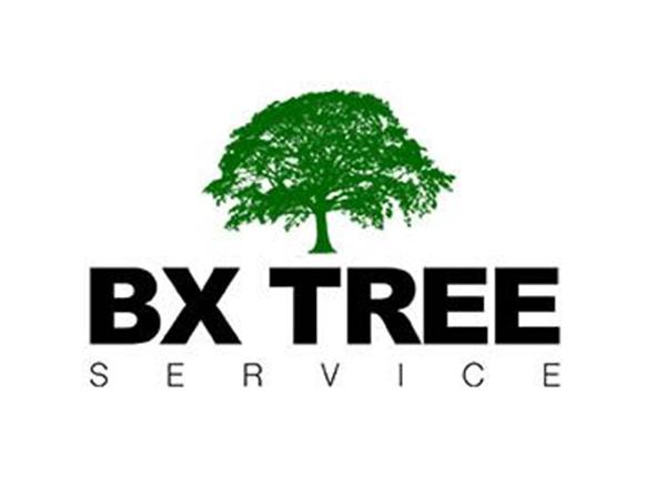 BX Tree Service
