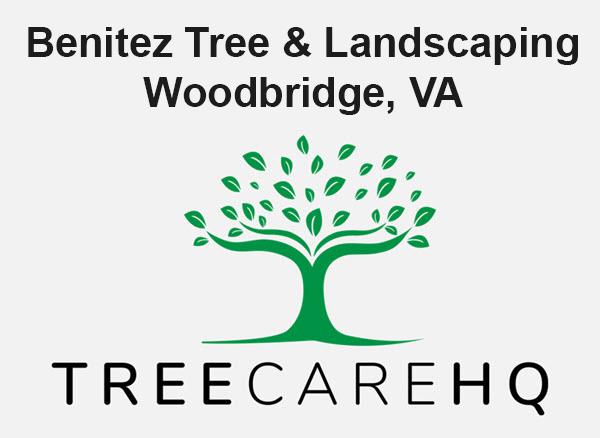 Benitez Tree & Landscaping