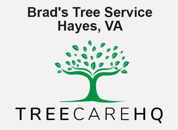 Brad's Tree Service