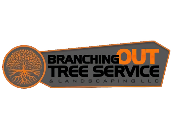 Branching Out Tree Service & Landscaping LLC