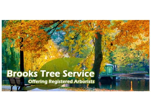Brooks Tree Service on TreeCareHQ