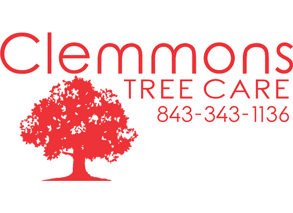 Clemmons Tree Care and Tree Trimming