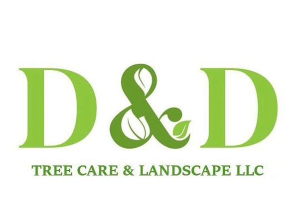 D & D Tree Care and Landscape