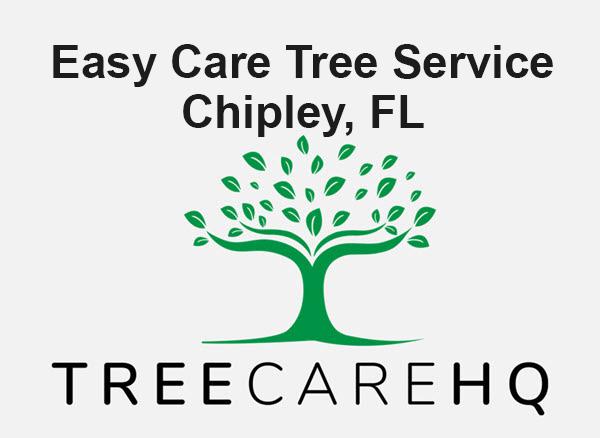Easy Care Tree Service