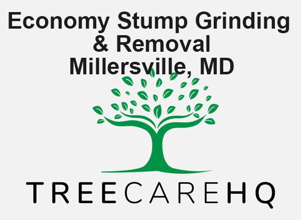 Economy Stump Grinding & Removal