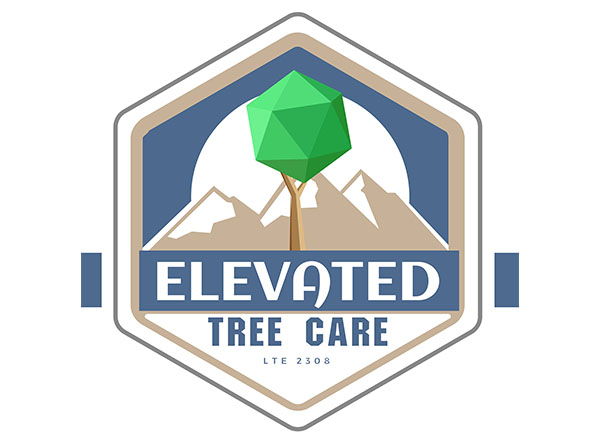 Elevated Tree Care