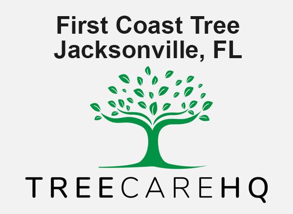 First Coast Tree