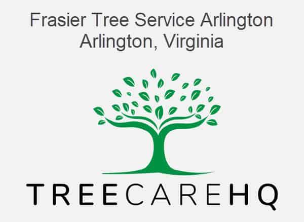 Frasier Tree Service Arlington