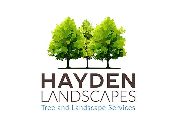 Hayden Landscapes