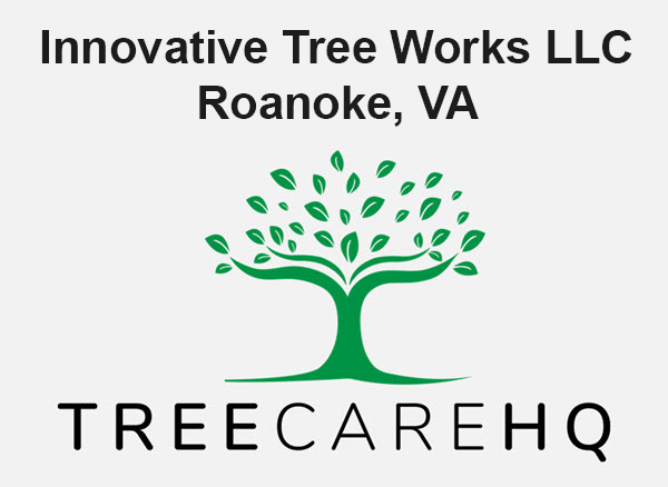 Innovative Tree Works LLC