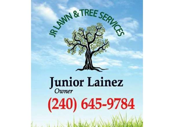 Jr Lawn & Tree Services