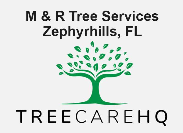 M & R Tree Services