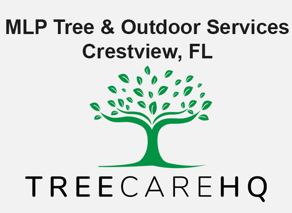 MLP Tree & Outdoor Services