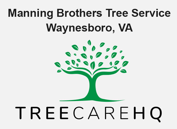 Manning Brothers Tree Service
