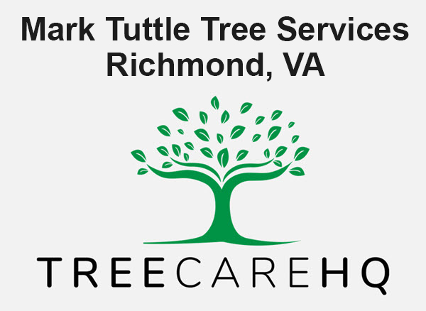 Mark Tuttle Tree Services