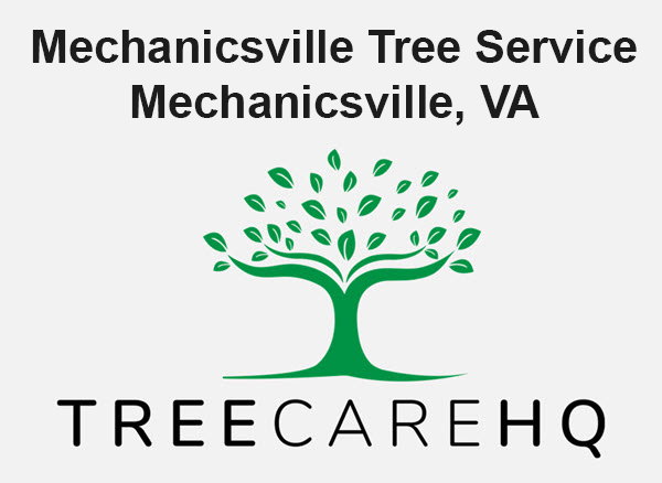 Mechanicsville Tree Service