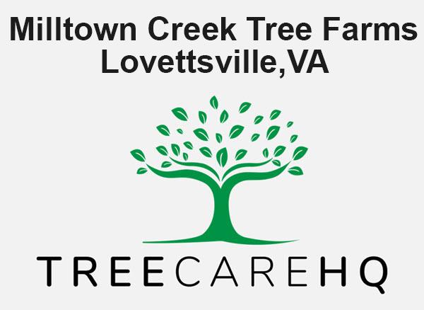 Milltown Creek Tree Farms