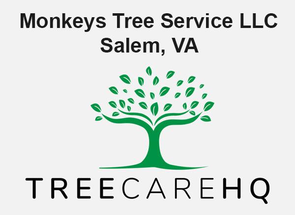 Monkeys Tree Service LLC