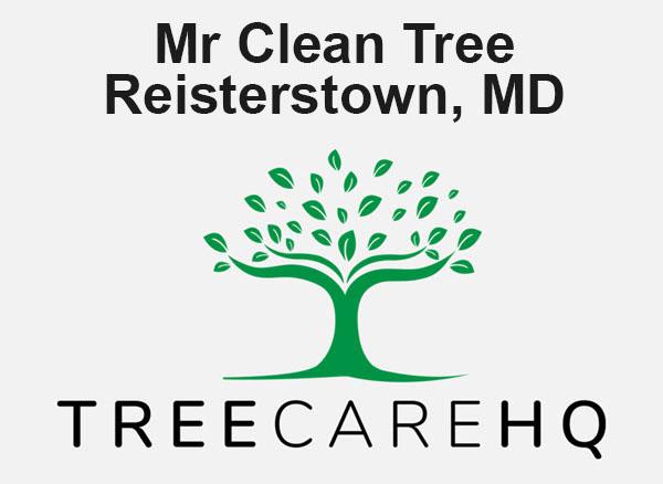 Mr Clean Tree