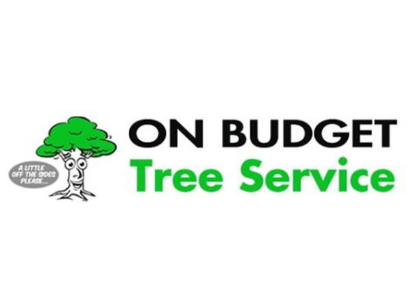 On Budget Tree Service LLC
