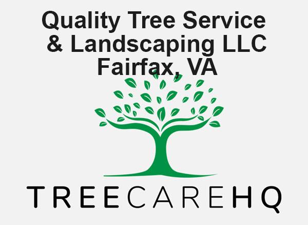 Quality Tree Service & Landscaping LLC