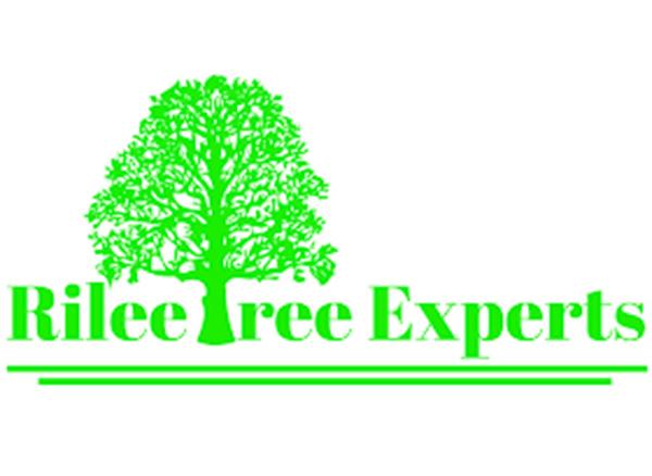 Rilee Tree Experts