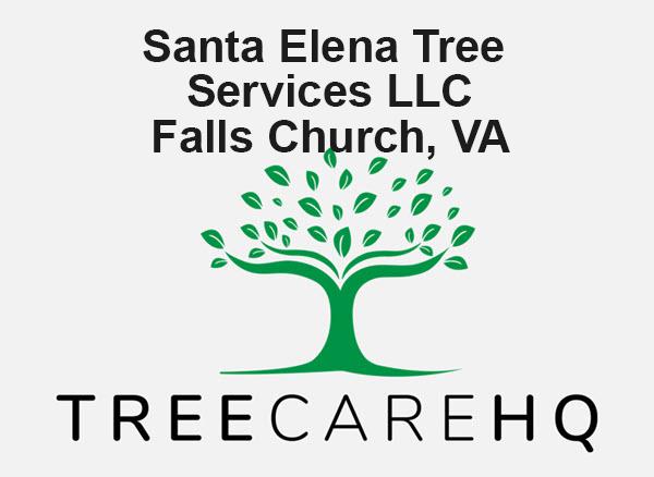 Santa Elena Tree Services LLC