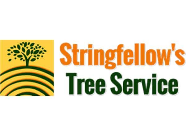 Stringfellow's Tree Service