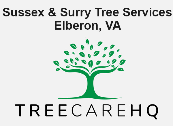 Sussex & Surry Tree Services