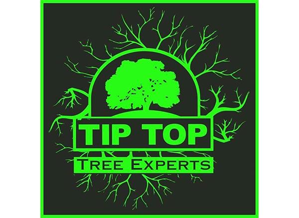 Tip Top Tree Experts LLC