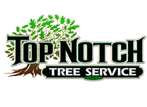 Top Notch Tree Service Inc.