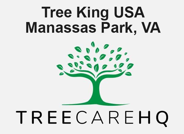 Tree King Usa