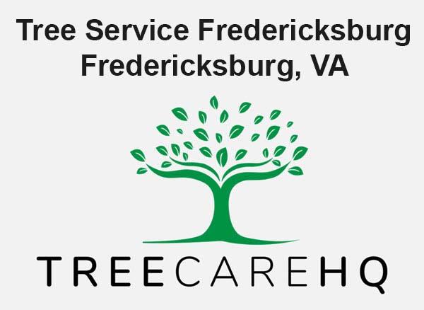 Tree Service Fredericksburg