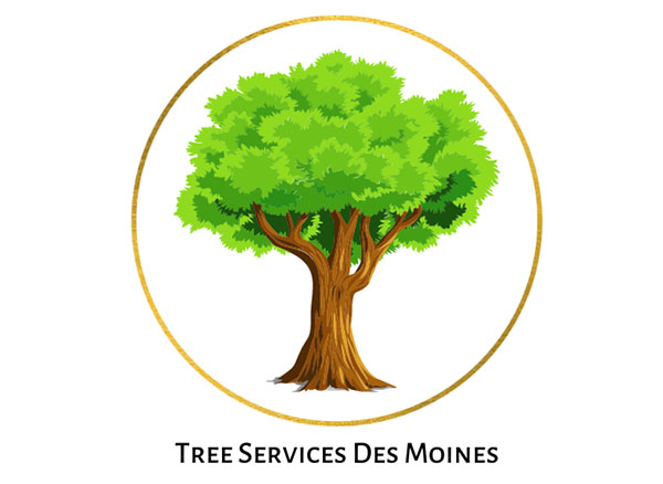 Tree Services of Des Moines