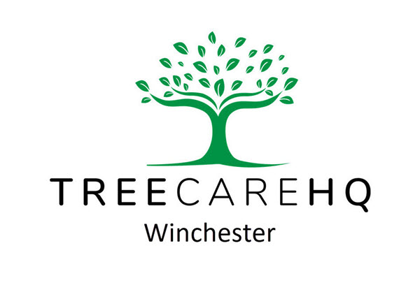 TreeCareHQ-Winchester-600×438