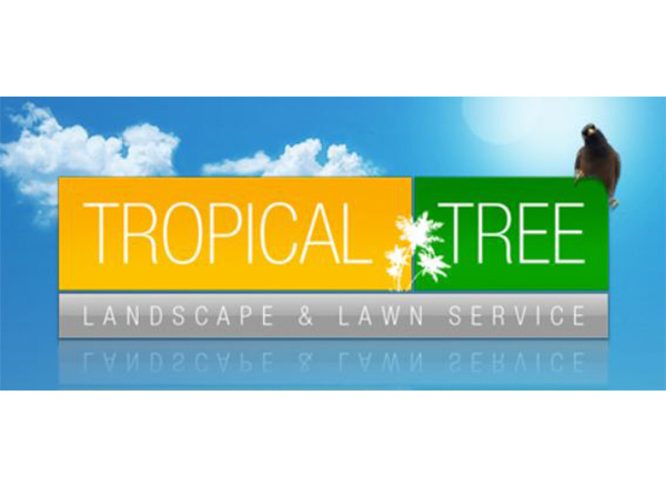 Tropical Tree and Landscape