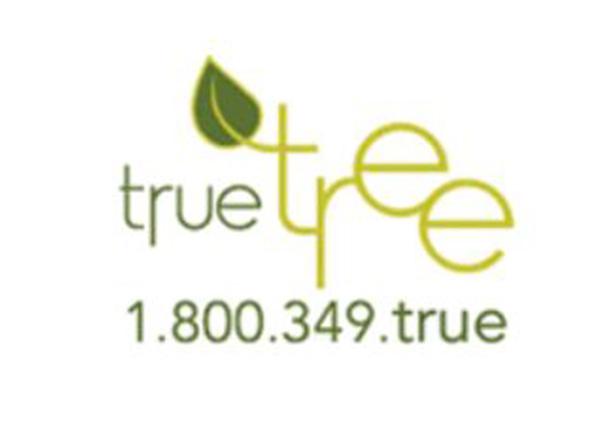 True Tree Inc
