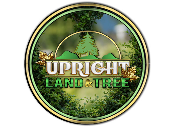 Upright Land & Tree