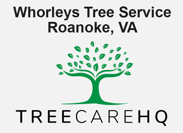Whorleys Tree Service