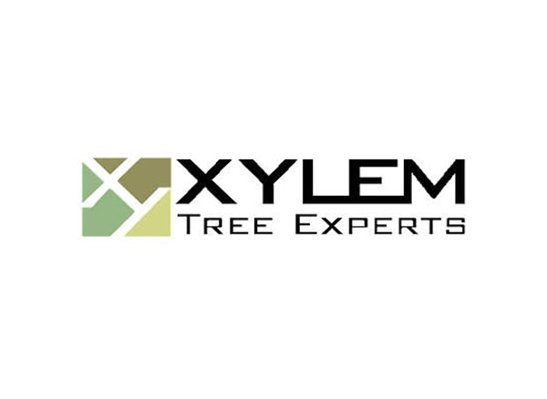 Xylem Tree Experts
