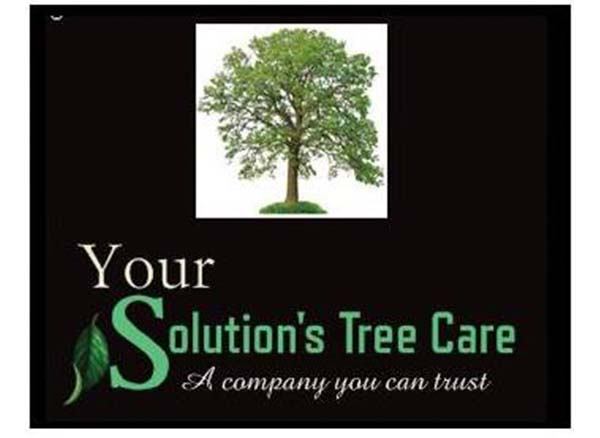Your Solutions Tree Care