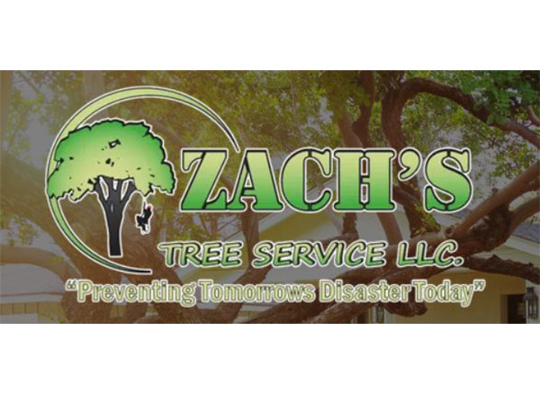 Zachs Tree Service